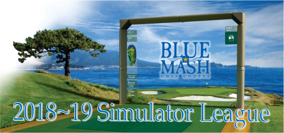 2018 Simulator League Banner - Blue Mash